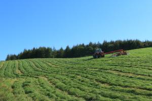 牧草の乾燥作業