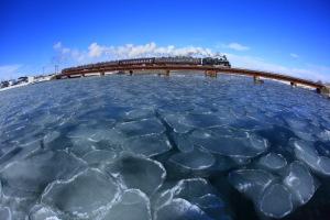 蓮氷浮かぶ釧路川鉄橋