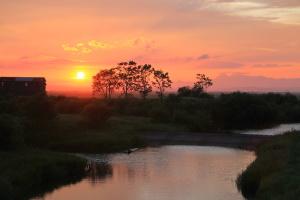 湿原の夕陽